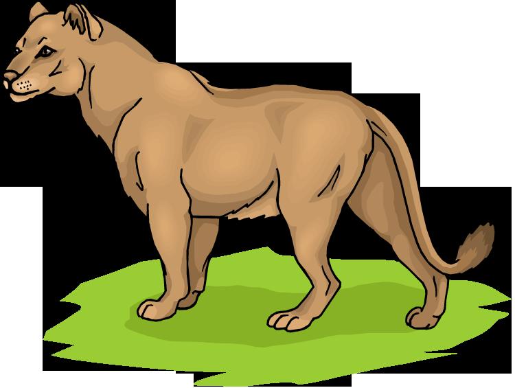 Free Lion Clipart