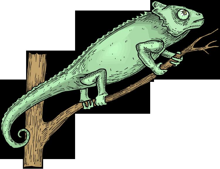 Free Lizard Clipart