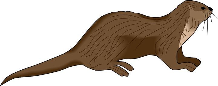 river otter clip art source http jobspapa com id11 clip art otter html