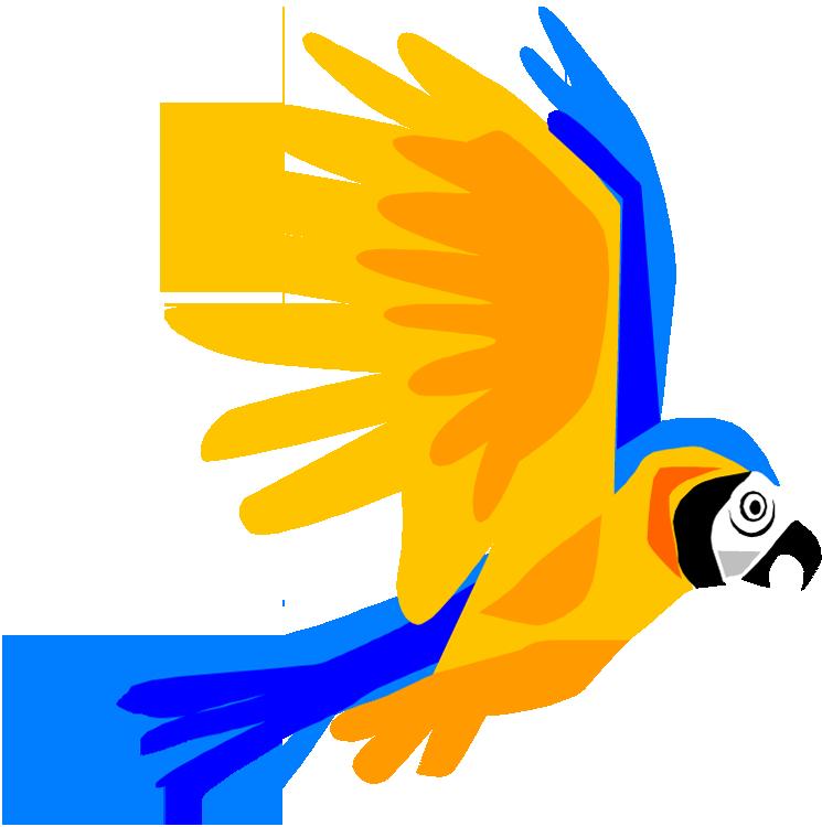 clipart parrot pictures - photo #34