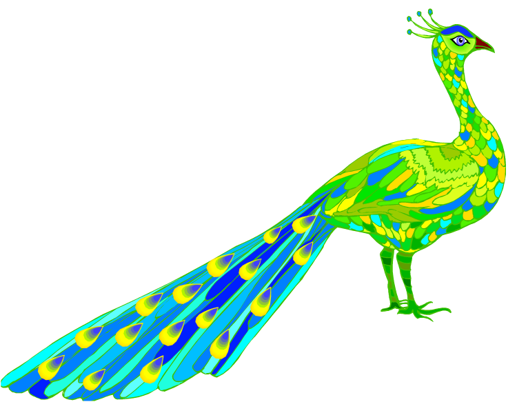 free peacock clipart free peacock clip art images free printable peacock clipart