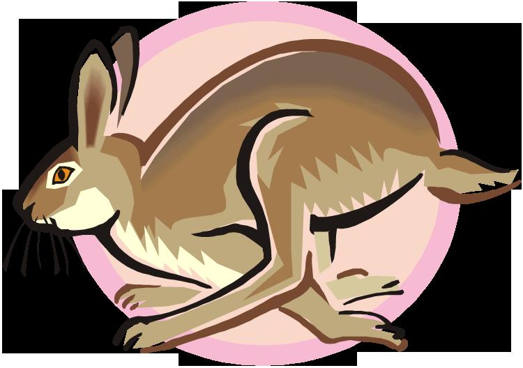 209 bunny rabbit clip art free | Public domain vectors