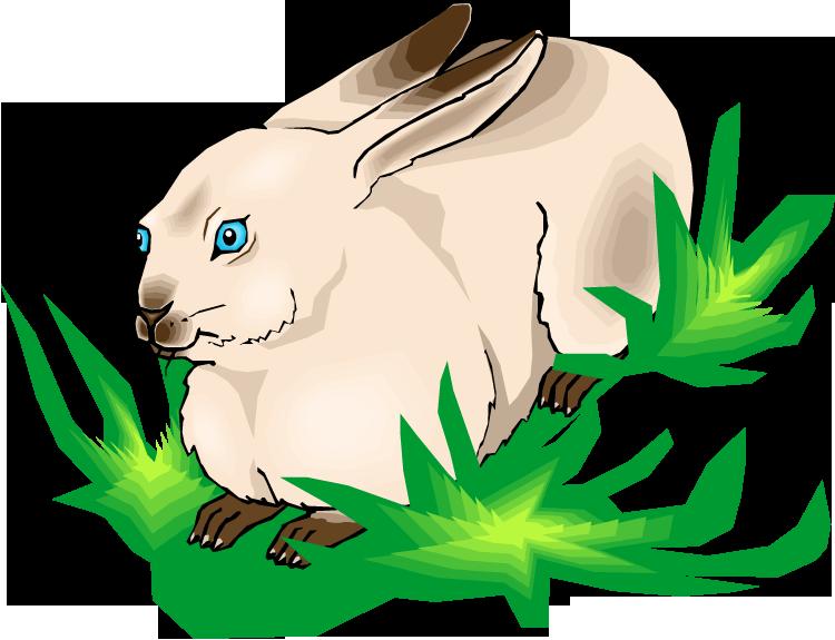 free rabbit clipart rh wildlife animals com peter rabbit clipart free peter rabbit clip art free