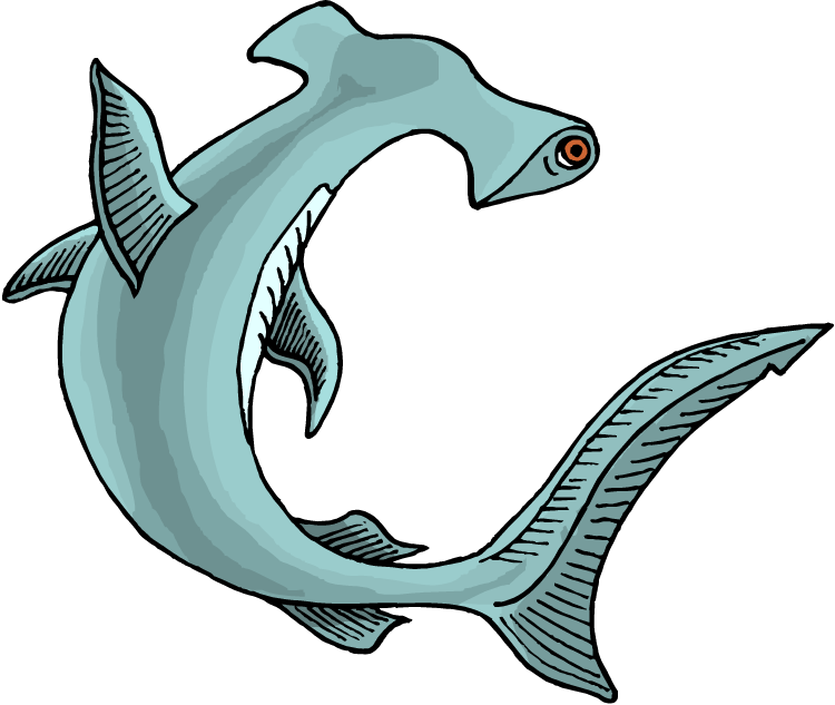 free shark clipart rh wildlife animals com hammerhead shark clipart images hammerhead shark cartoon clipart