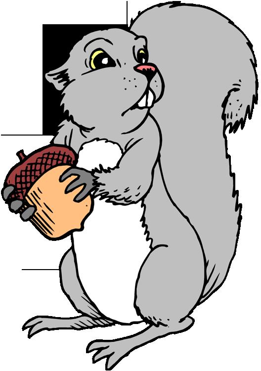 clip art cartoon squirrel - photo #29