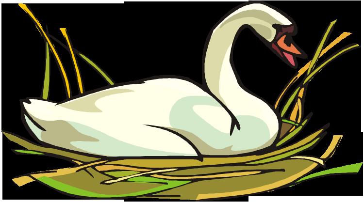free swan clipart rh wildlife animals com black swan clip art black swan clip art