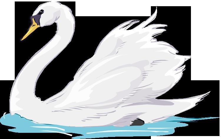 Swan Lake Clipart Free Swan Clipa...