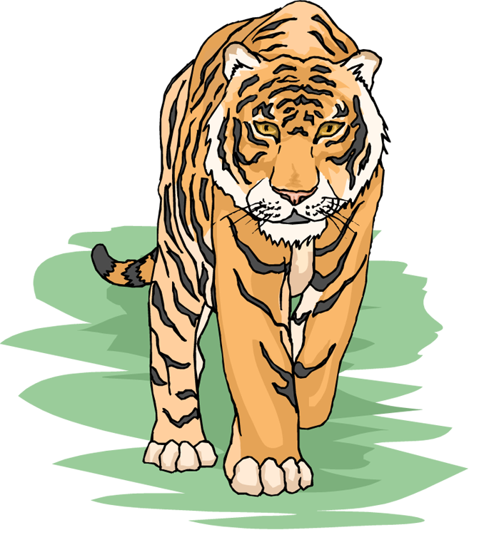 Tiger Clipart: www.wildlife-animals.com/tiger/tiger-clipart.php
