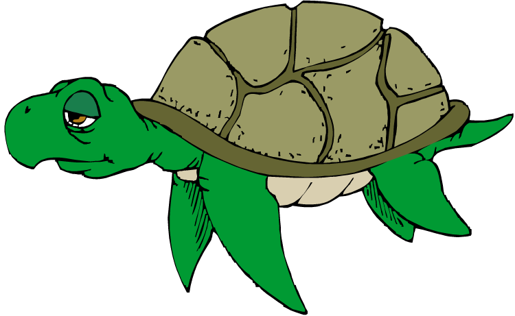 free turtle clipart turtle clipart black and white turtle clipart freeware