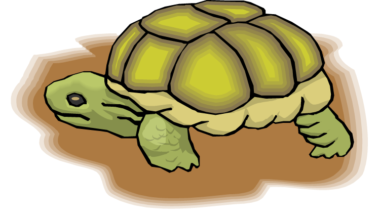 Free turtle clipart - Clipart tortue ...