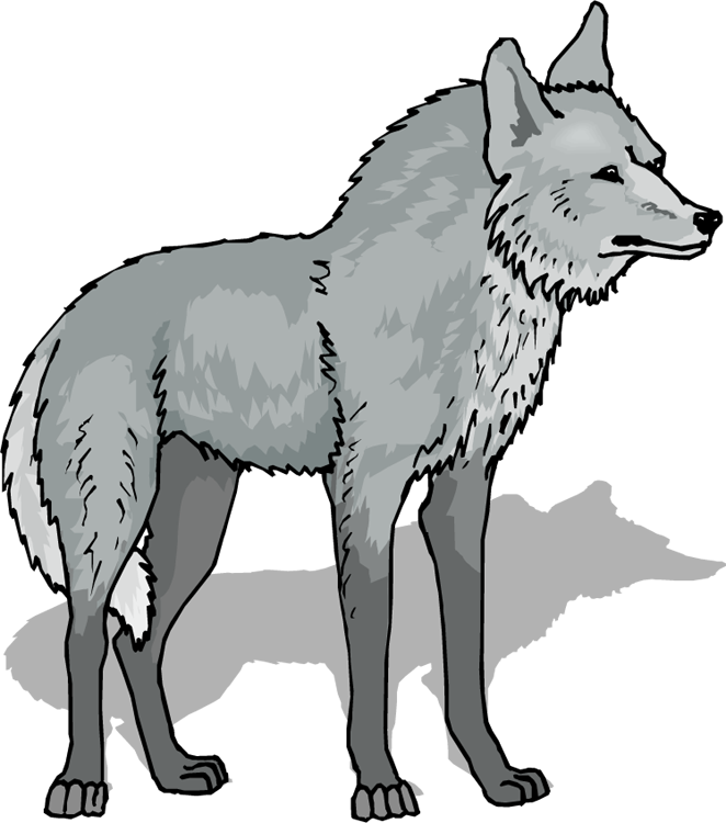 Free Wolf Clipart