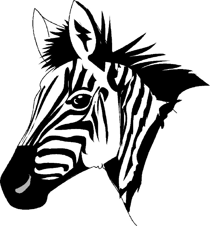 Zebra face cartoon - photo#16