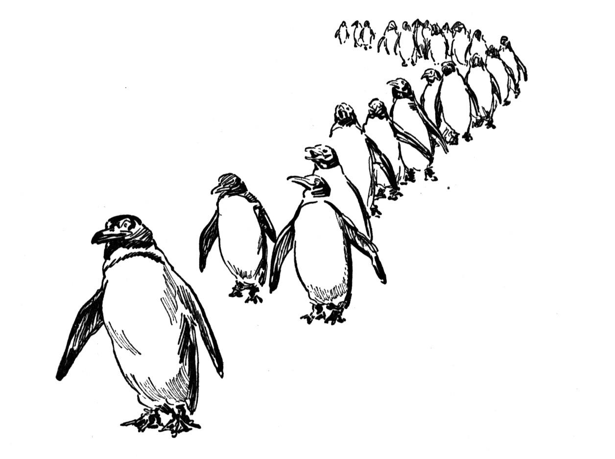 Coloring Sheets Penguins -